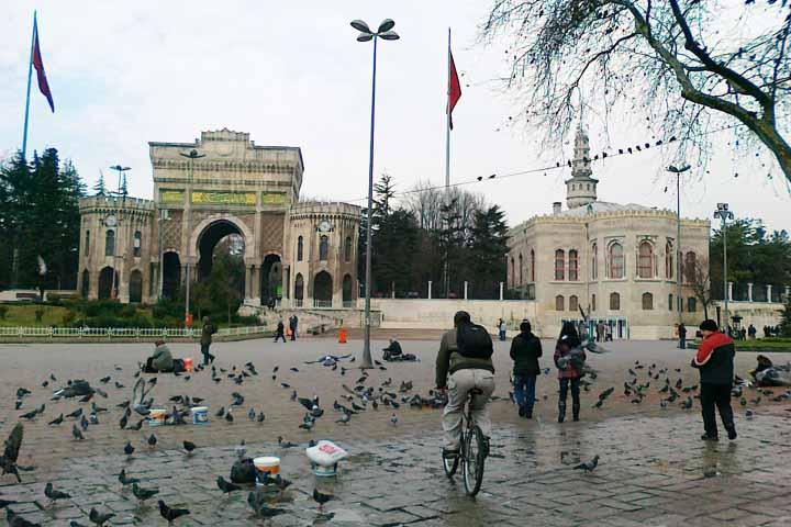 پردرآمدترین رشتههای تحصیلی در ترکیه